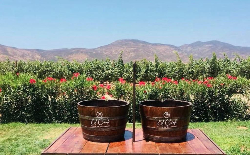 El Cielo Winery & Resort celebrará la Vendimia con Au Pied de Cochon y Alfredo Di Roma