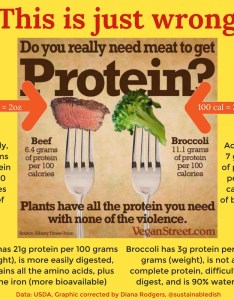 Beef vs broccoli is wrong also more protein better sustainable dish rh sustainabledish