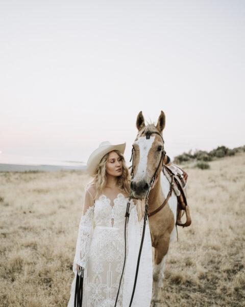 Vayanna-Horse