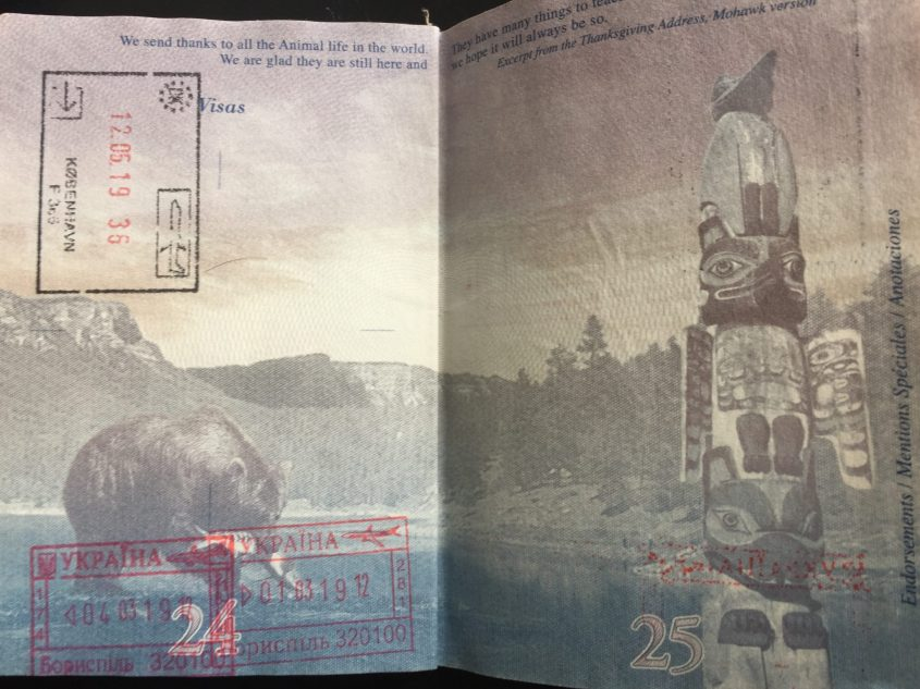 South African passport requirements explained