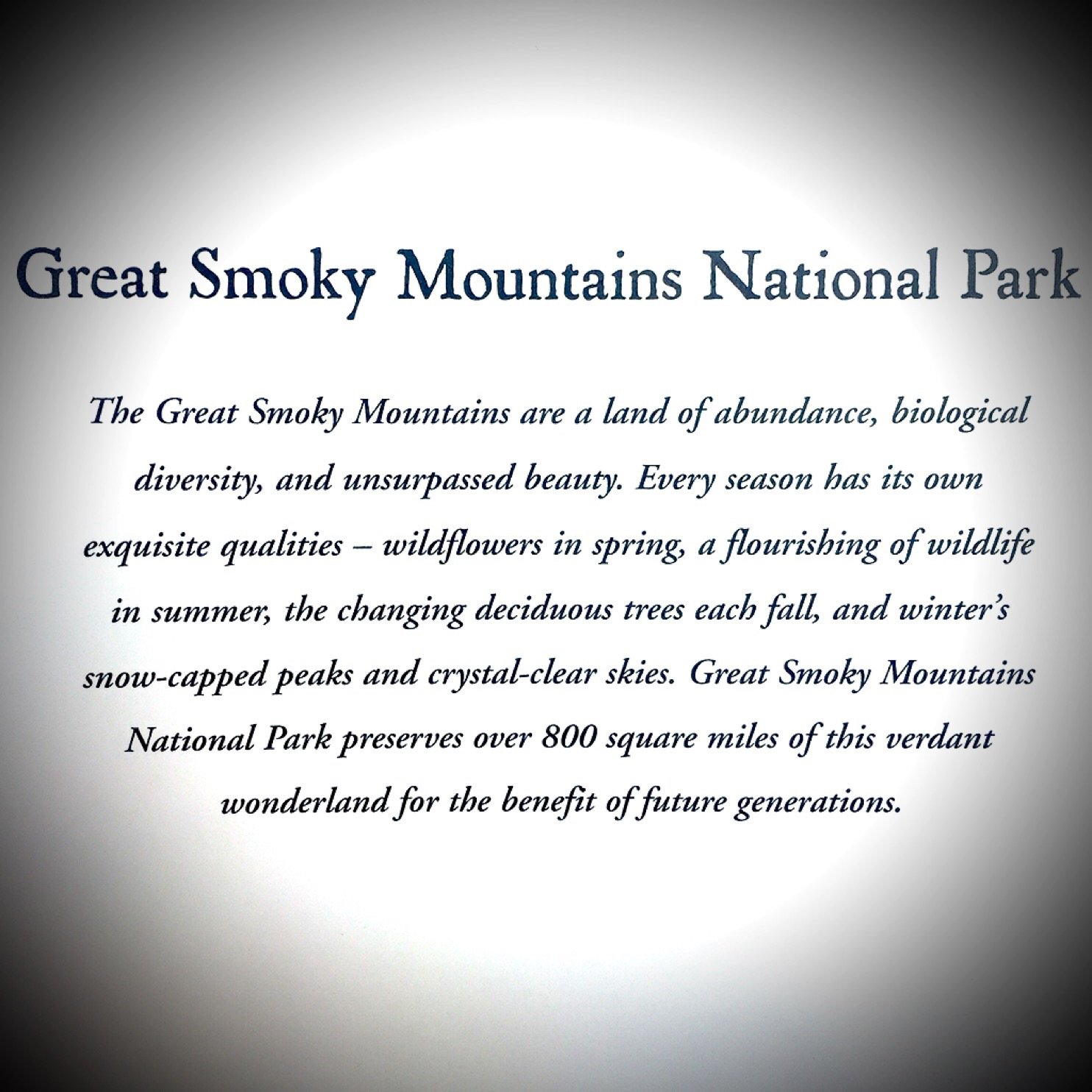 Great Smoky Mountains - Photography Book
