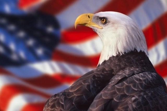 Happy Birthday America Eagle