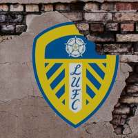 """Newcastle Might """"Do a Leeds""""? Don't Make Me Laugh   -   by Rob Atkinson"""