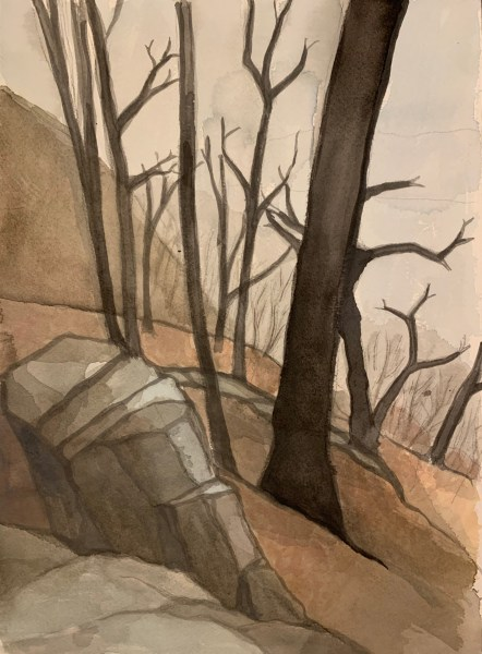 Cliff Painting number 5 by Robert Egert. Painted in watercolor from life at the cliffs overlooking the Hudson River in Palisades Interstate Park in Winter 2019.