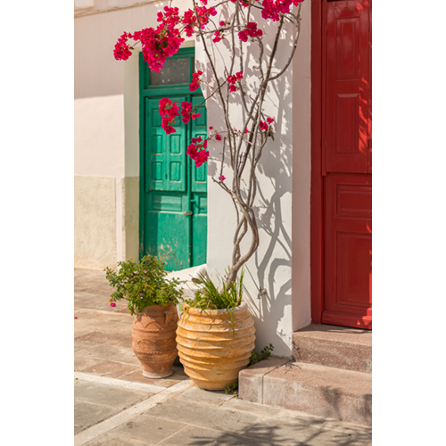 YO_Poros_doors_flowers_00