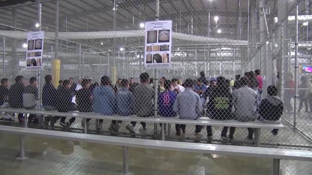 kids in cages