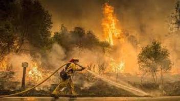 weary firefighters 2