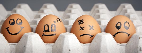 eggsheader