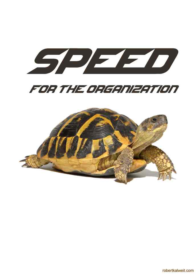 Motto poster biz dev speed for the organization turtle