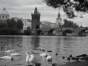 Moldauufer_Prag_c_Kleindienst