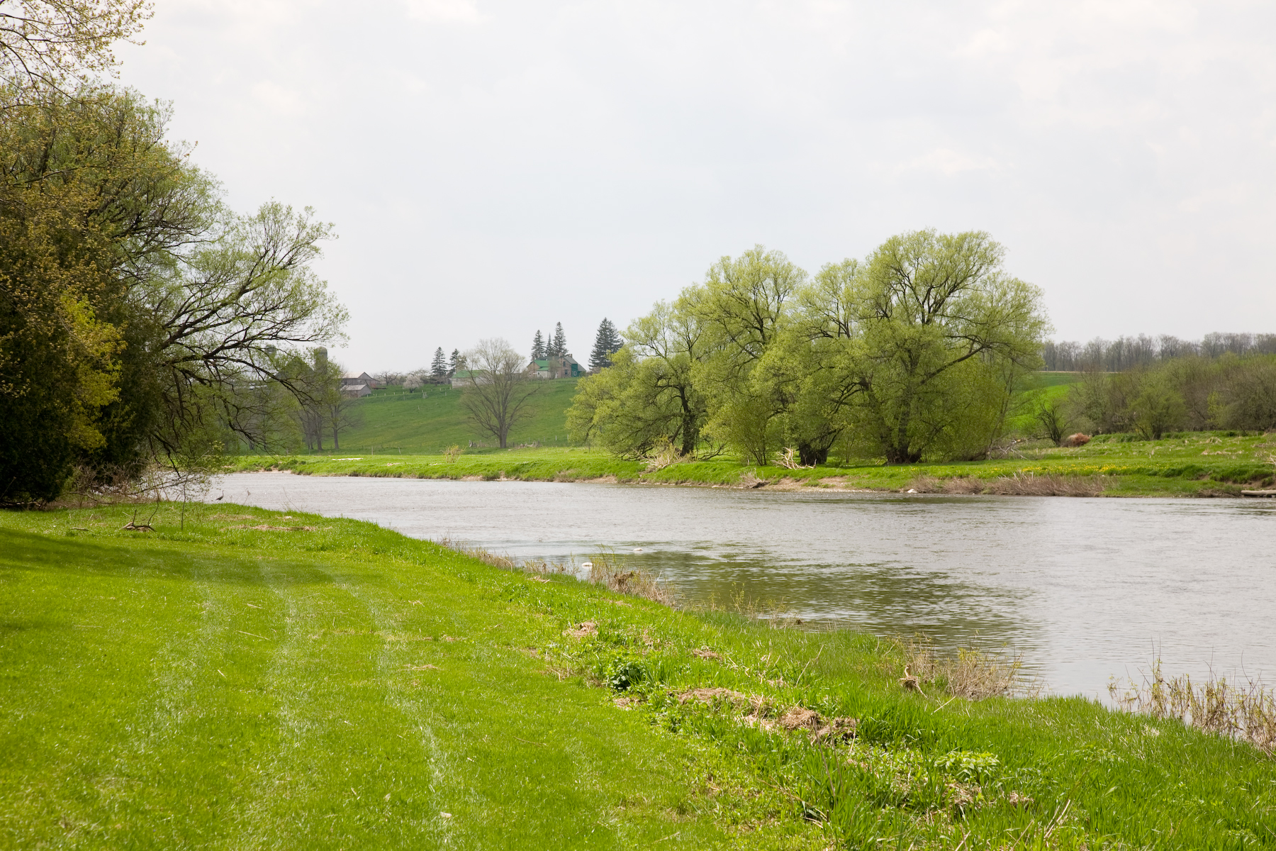 The Grand River at West Montrose