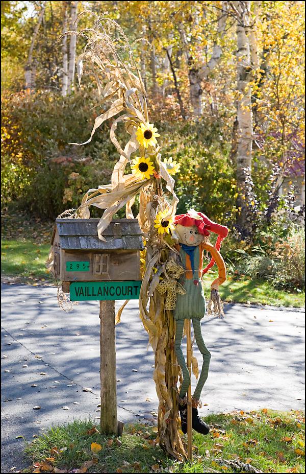 Mailbox Guard