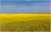 My Canada Manitoba
