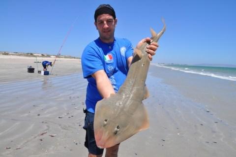 sandy fish roberto accardi