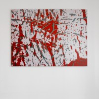 THE CANVASES GALLERY