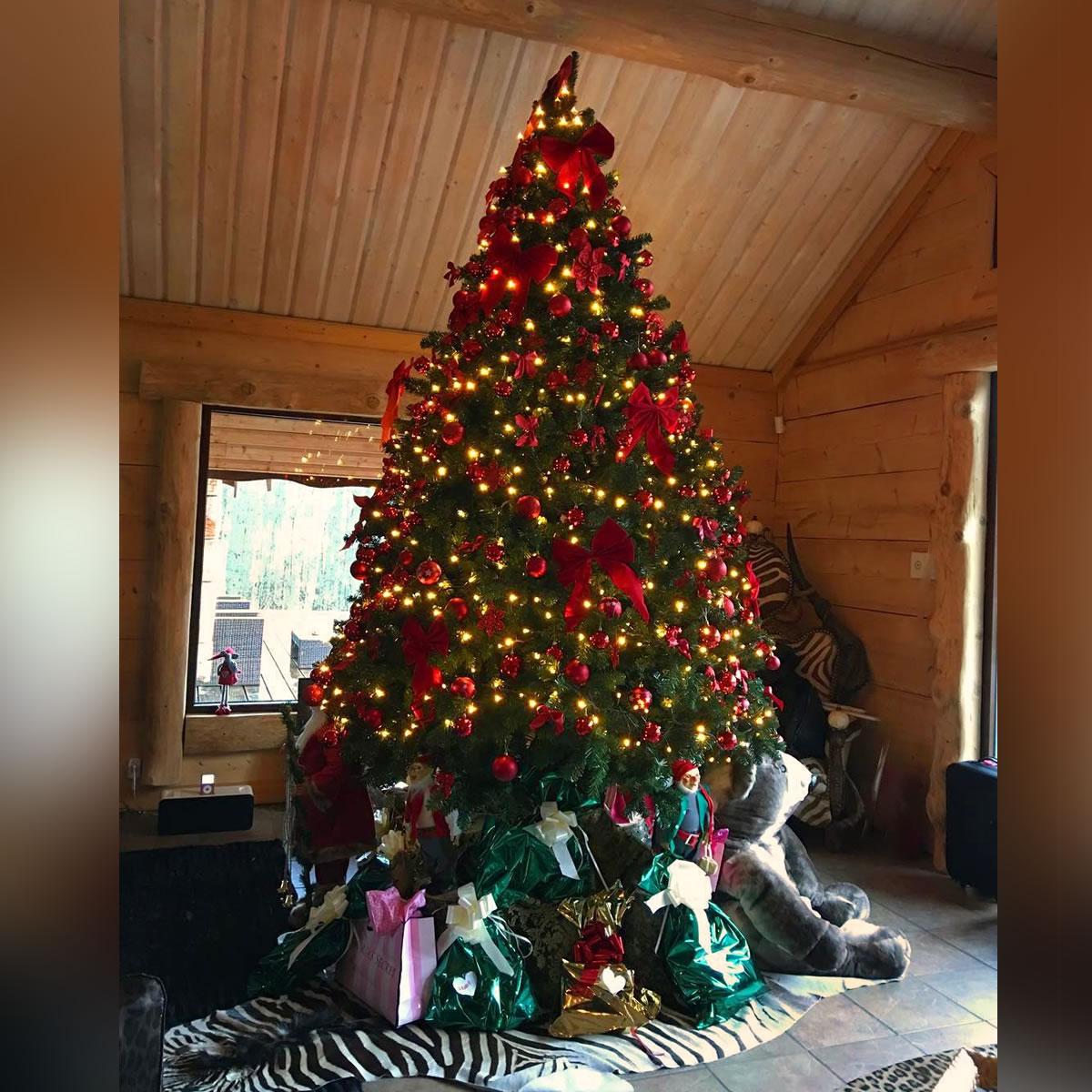 411 The Christmas Tree The Tree Of Paradise Roberto Cavalli Blog