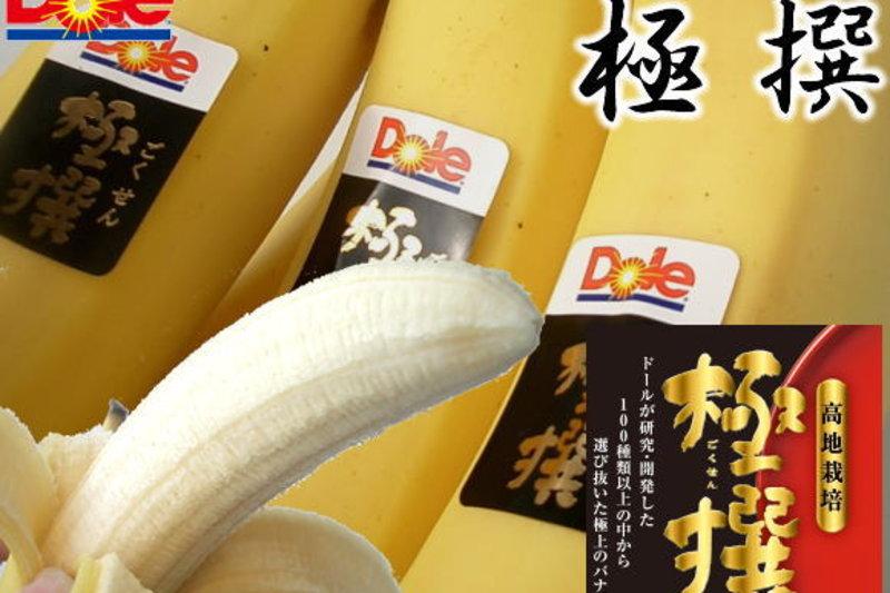 Standard Fruit Co ( DOLE) debe hacer frente por Ley, al pago de 801 millones de FODESAF (Seg Social)