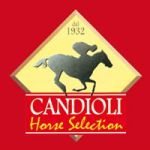 Candioli Horse Selection
