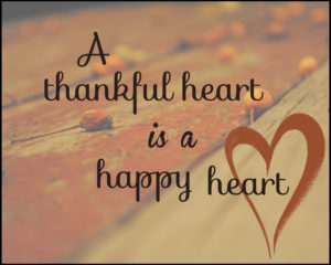 November 22 – Thankful for What We Have and Don't Have