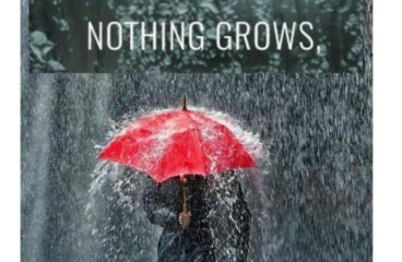 Apr 25 – Rain All Day