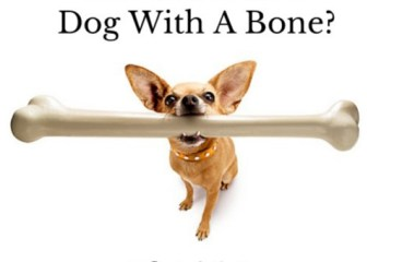 June 27 – A Dog With A Bone