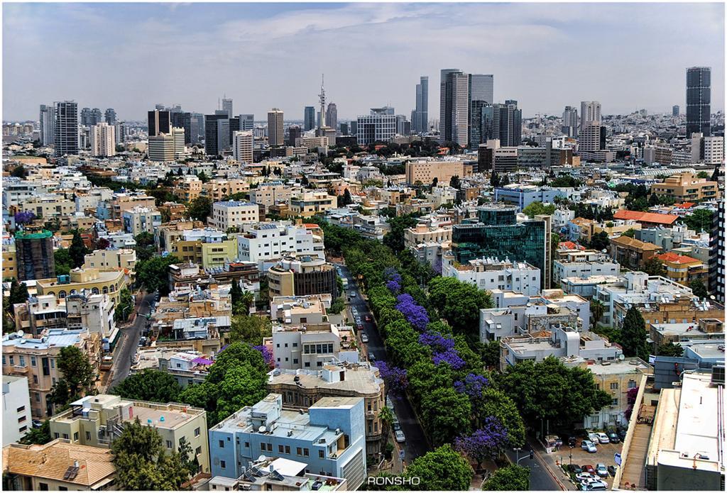 Rothschild Boulevard (by Ron Shoshani)
