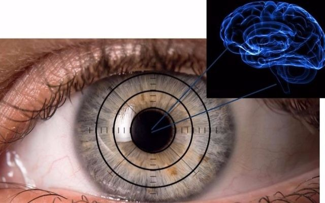Illustrative: The eye as a window to our brain. Sheba Medical team searches the eye for signs of Alzheimer's (Courtesy Ifat Sher)