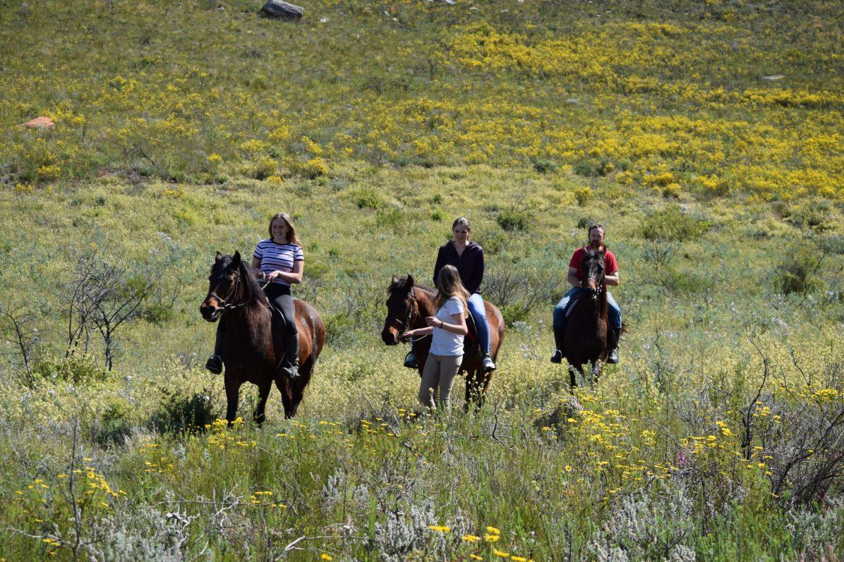 Trail rides in langeberg mountain