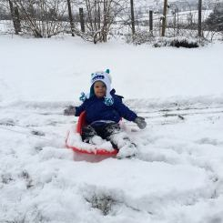 asher sledding