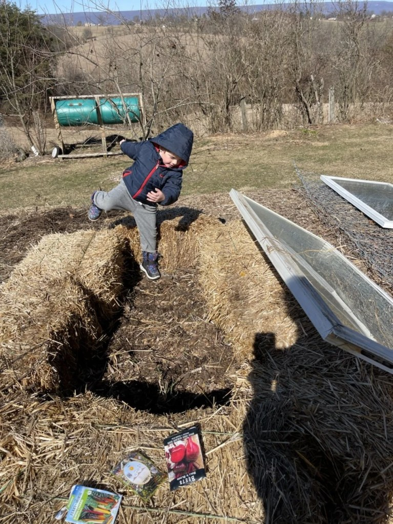 4 year old boy falling into space between hay bales