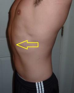 Human Fall Flat Wallpaper Should We Train The Rectus Abdominis Robertson Training