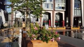 Nota RUVS2015 - avondzon op terrassen O-zijde, met bloemen