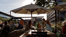 Nota RUVS2015 - avondzon op terrassen O-zijde, op terras 2