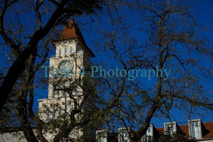Old church tower in Lisbon, Portugal. The tower can be seen behind naked tree branches and against a very deep blue winter sky.