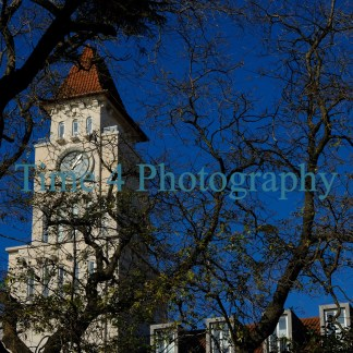 Old church tower in Lisbon, Portugal, behind tree branches and against a blue sky