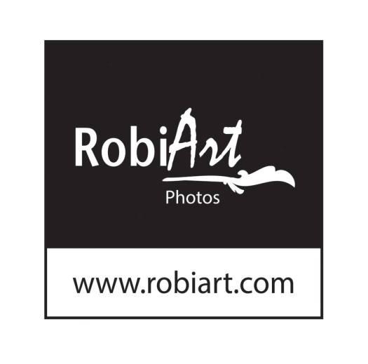 LOGO RobiArt