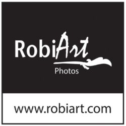 RobiArt