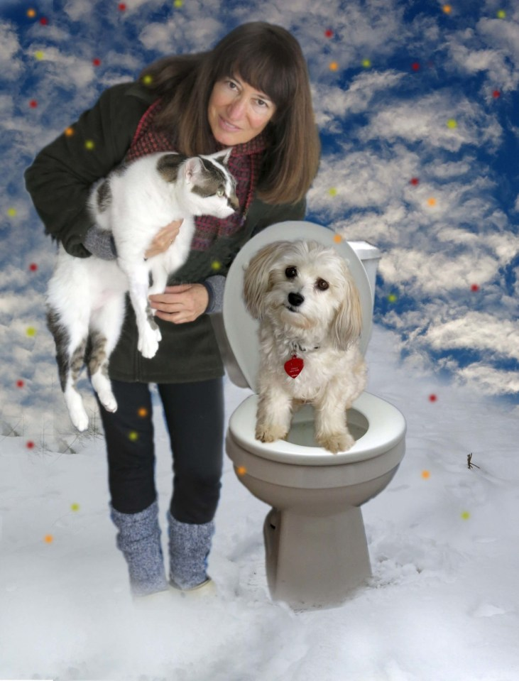 Robin Botie in Ithaca, New York poses with cat and Suki-dog Havanese and toilet in the snow.