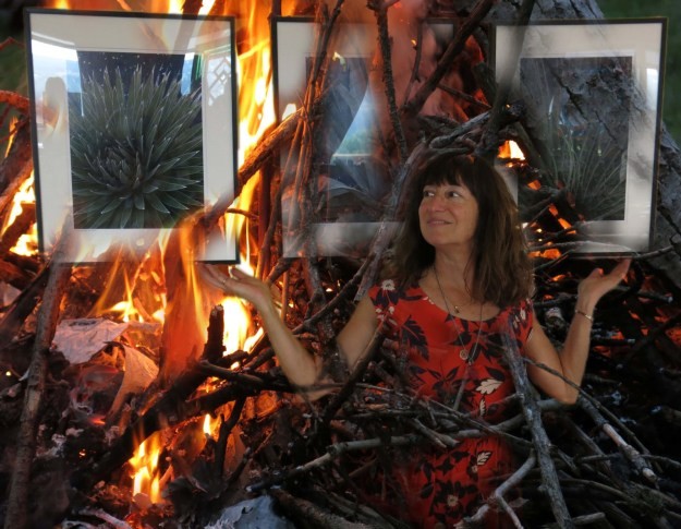 Robin Botie of Ithaca, New York, photoshops her image in campfire flames along with photos from an exhibit of wildlife-up-close by Fingerlakes Photographers