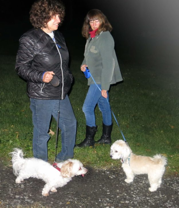 Robin Botie of Ithaca, New York, walking the dog at night.