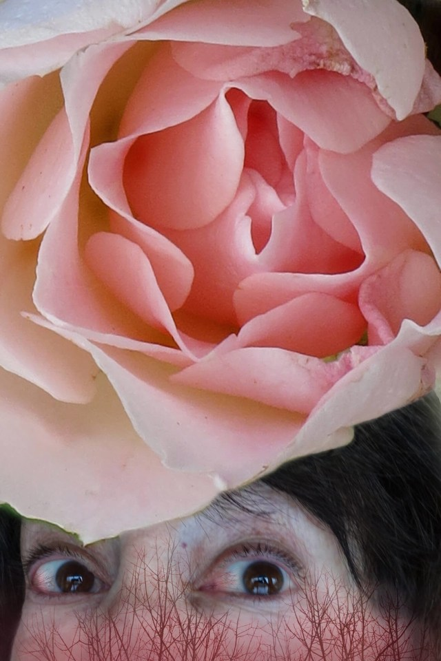 With eyes bloodshot from crying, Robin Botie of Ithaca, New York, Photoshops a rose over her rosy veined face.