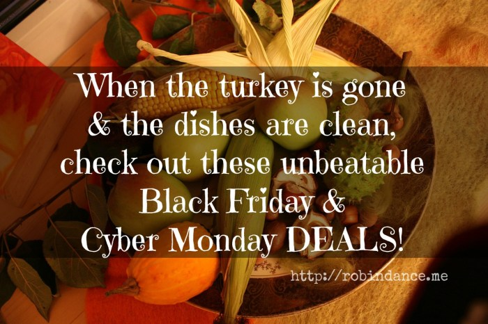 Happy Thanksgiving - The Best Black Friday and Cyber Monday Deals