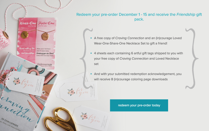 Craving Connections - Pre-order incentives