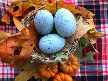 Grateful nest