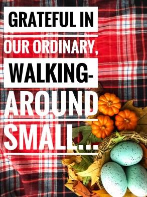 Ordinary, Walking-Around Small
