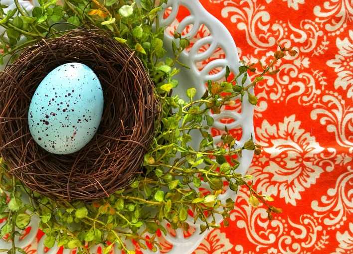 Orange spring nest