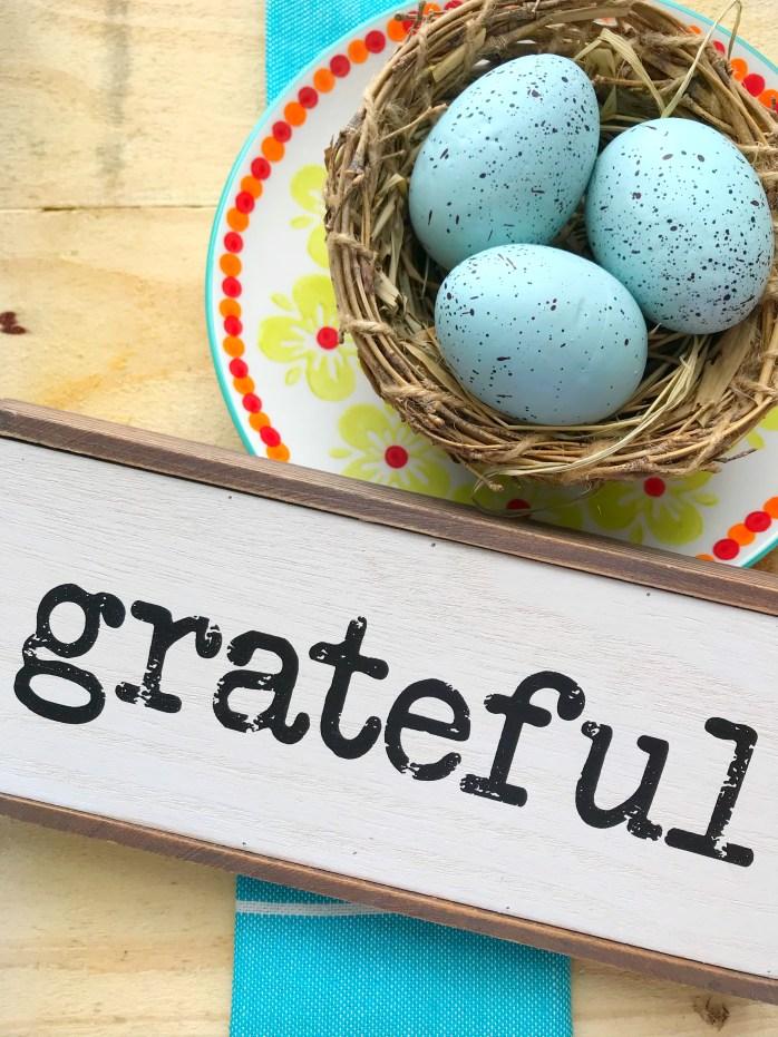 Mundane Grateful Nest