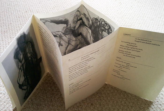 Cell, by Clare Best & Michaela Ridgway, Frogmore Press 2015