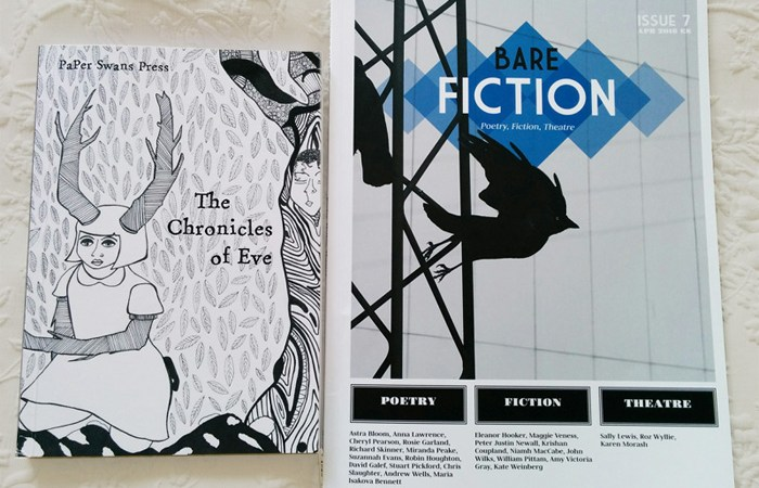Chronicles of Eve & Bare Fiction magazine