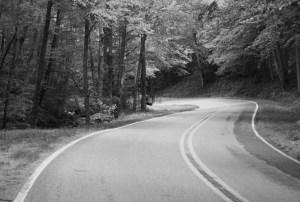 a winding road in north carolina
